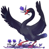 Enamored Swan
