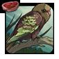Oasis Songbird