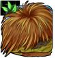 Trampled Drygrass