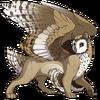 Banded Owlcat