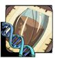 Capsule Gene