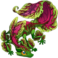 Watermelon Coleus Gecko