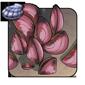 Scarlet Mussels