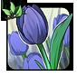 Blue Parrot Tulip