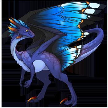 Blue Butterfly Skin