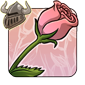 Blushing Pink Rose