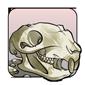 Squirrel Skull (old)