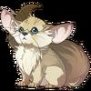 Downy Fox Rat