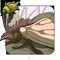 Petal Moth
