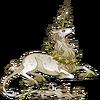Flora Cerdae