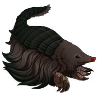 Silky Mole