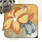 Marigold corsage