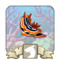 Sea Slugs Vista Icon