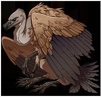 Dire Vulture