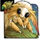 Golden Coa Moth