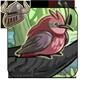 Paunchy Red Percher