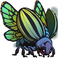 Empress Beetle