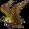 Murkbottom Gull