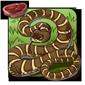 Banded Rattlesnake
