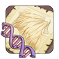 Stripes Gene