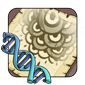 Ringlets Gene