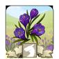 Spring Vista Icon
