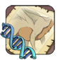 Underbelly Gene