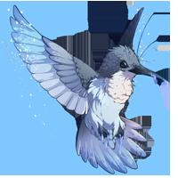 Frostbite Hummingbird