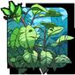 Longweed Bunch