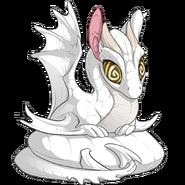 Swirl Light Eyes