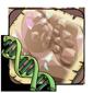 Crystal Gene