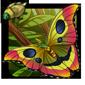 Mustache Moth