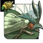 Catoptria Grass Moth