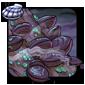 Shadowmist Oysters