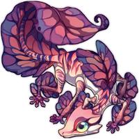 Princess Petal Gecko