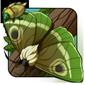False Leaf