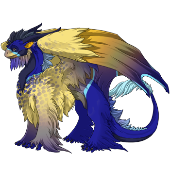 Blue Girdled Angelfish Skin