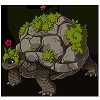 Terra Tortoise