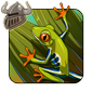 Red-eyed Tree Frog Companion