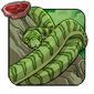 Emerald Ratsnake