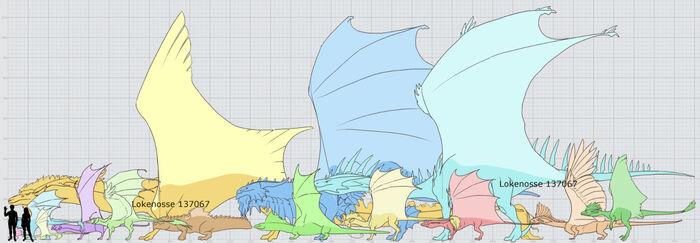 Lokenosse Dragon Breed Size Chart