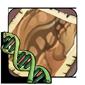 Skink Gene