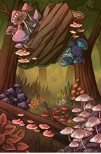 Fungi Vista