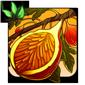 Sunbeam Fig