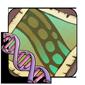 Spinner Gene