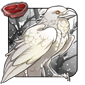 Leucistic Crow