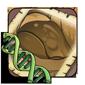 Wasp Gene