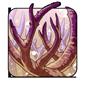 Dragonhorn Coral
