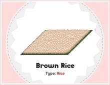 Brown Rice - Sushiria