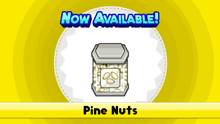 Pine Nuts TMTG